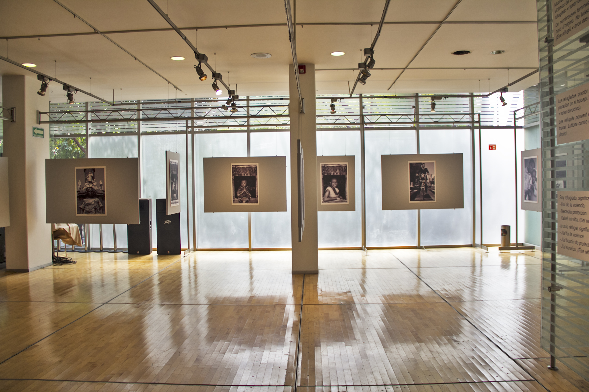 Galería Alianza Francesa  (Foto: Sam Rivas)