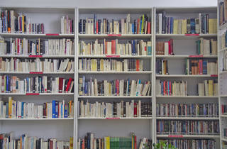 Biblioteca (Foto: Sam Rivas)