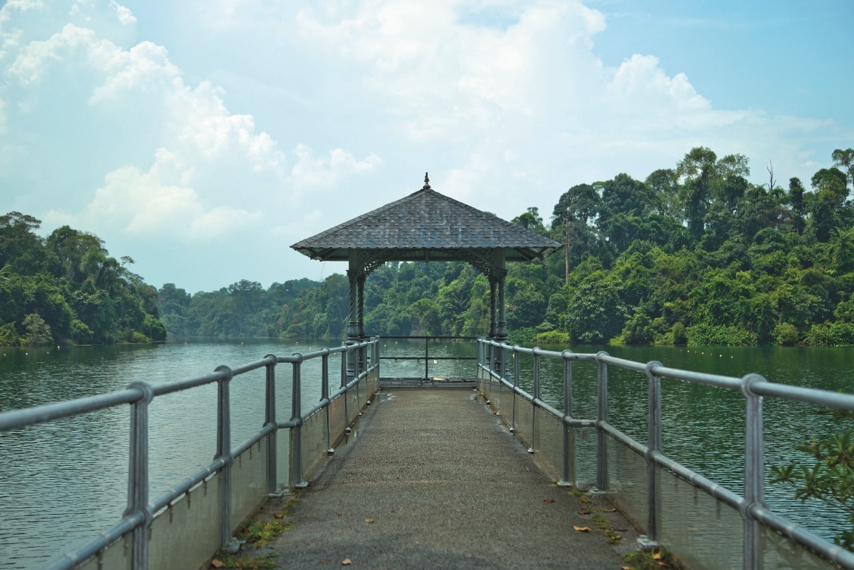 Guide to MacRitchie