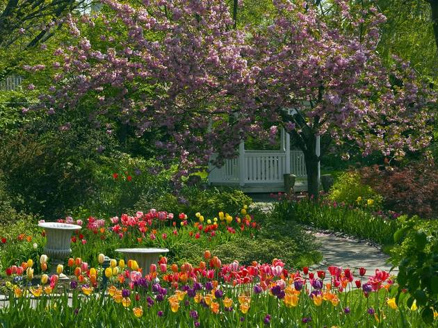 Mother's Day Brunch at Queens Botanical Garden