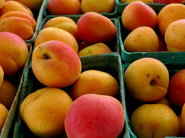 Astoria Greenmarket