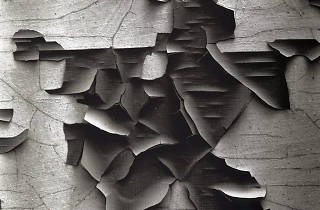 """Aaron Siskind: Abstractions"""