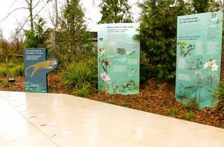 zoo vincennes (© C.Gaillard)