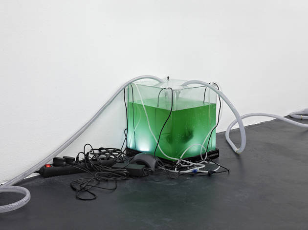 (© Daniel Keller. Courtesy Zabludowicz Collection, and Kraupa-Tuskany Zeidler, Berlin. )