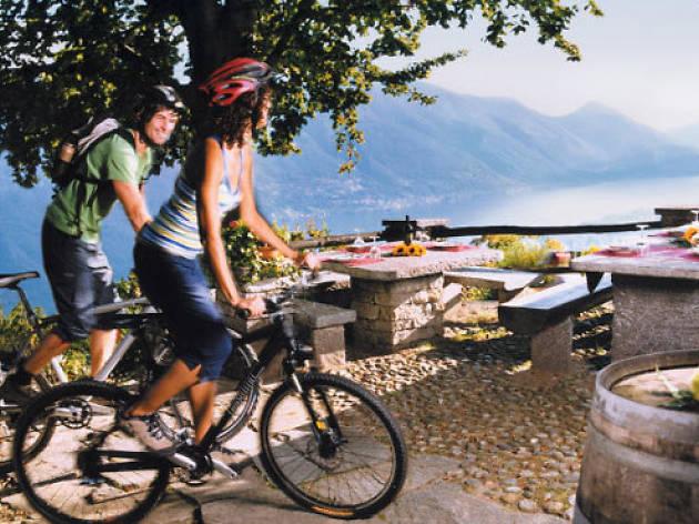 cycling wine