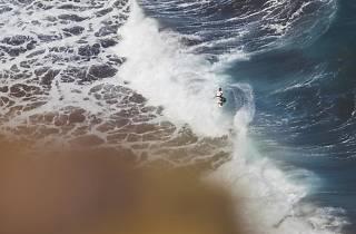 Arnette Surfcity Festival