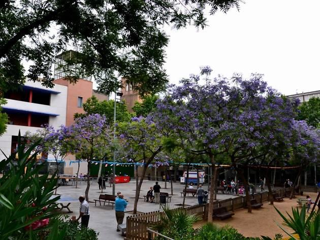 Plaça Trinitat Vella