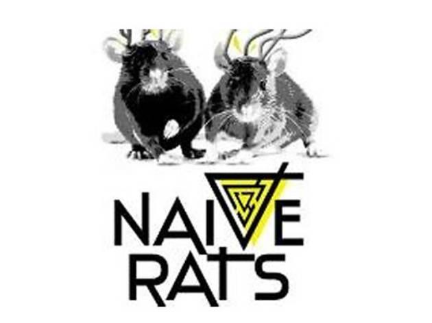 Naive Rats: Yiğit Soncul & Hemi Behmoaras