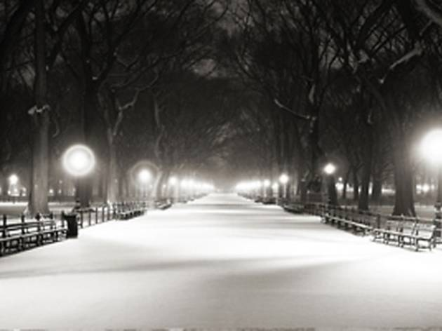 Venedik & New York