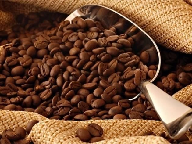 Üç Şehir Bir Kahve: Kahire, İstanbul, Viyana