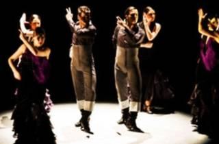 Rojas & Rodriguez Flamenko Topluluğu