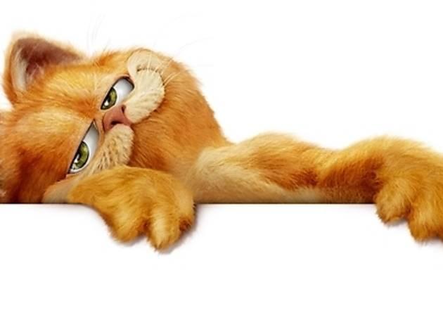 Garfield lasagna wallpaper