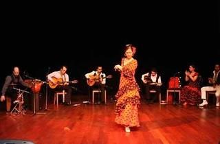 Flamenko İstanbul Derneği Gösterisi