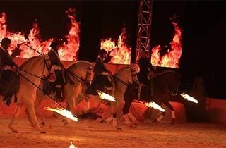 Atların Efendisi