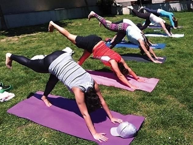 Nala Yoga Açık Hava Yogası