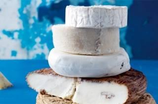 Artisan Peynir