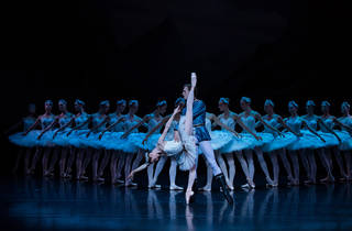 Swan Lake TAB 2016 4 (Photograph: Kate Longley)