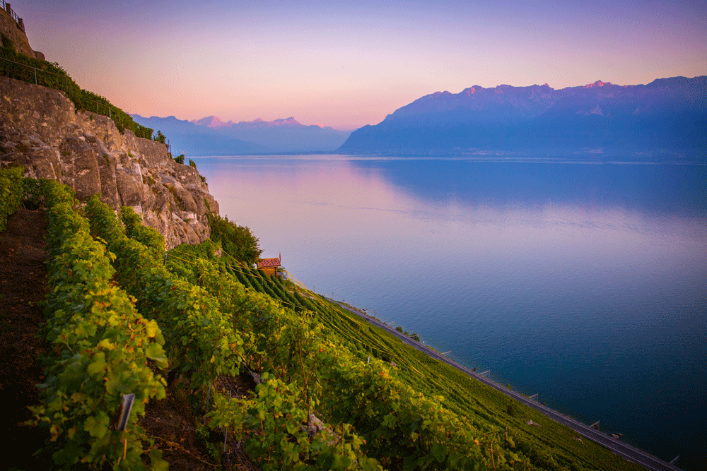 15 great photos of Lausanne in spring and summer