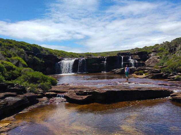 Royal National Park, Sydney