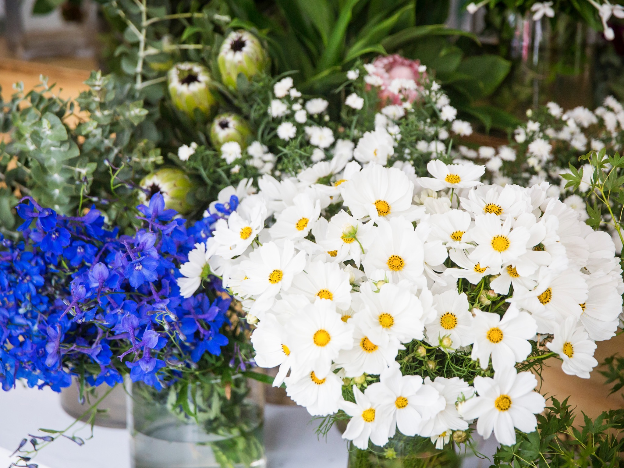 Flowers at My Flower Man