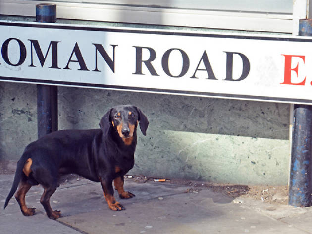 11 reasons to go to Roman Road in Bethnal Green and Bow