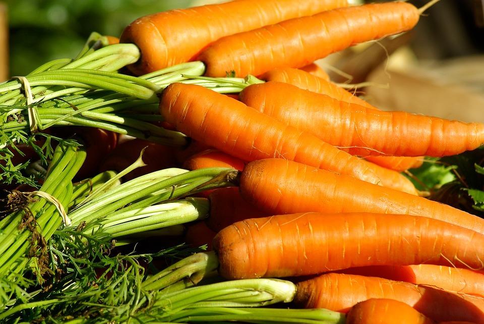 Healthy Food Hub at South Shore Good Foods Market