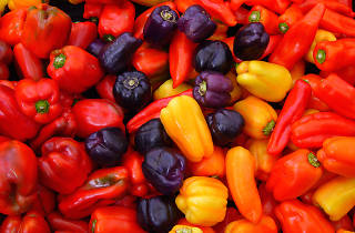 bell peppers stock