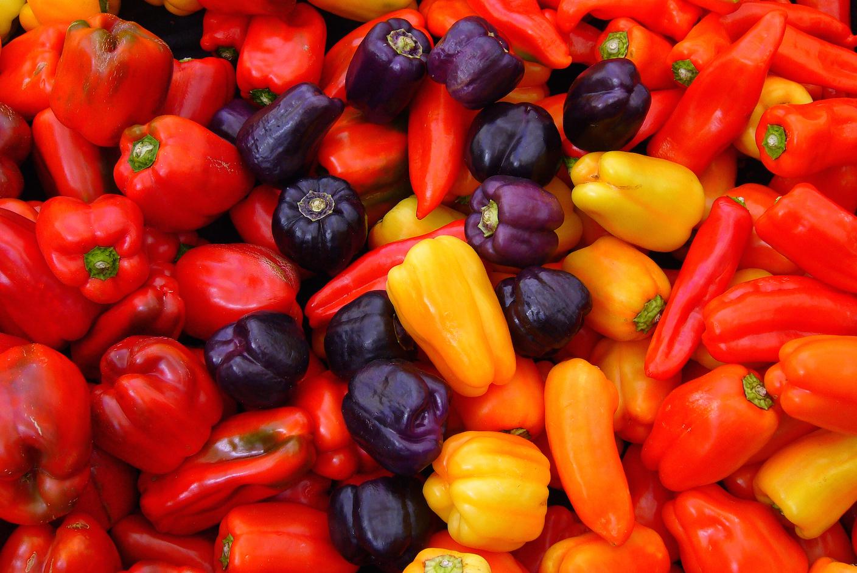 Lawndale Chicago Botanic Garden's Windy City Harvest Market