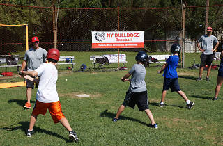 Bulldog Ball Club Baseball Camp