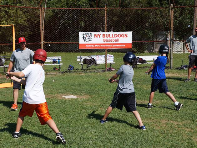 Bulldog Ball Club Baseball Camp