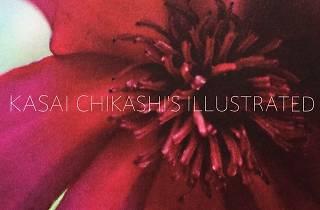 KASAI CHIKASHI'S ILLUSTRATED