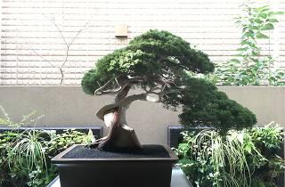 日本伝統工芸フェスタ2