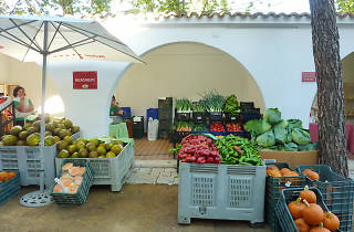 Día de Mercado de la Cámara Agraria