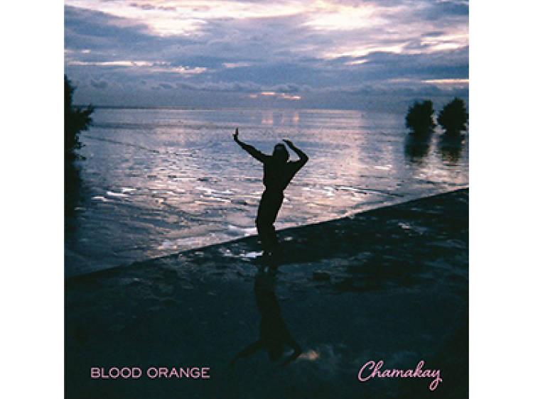 """Chamakay"" by Blood Orange"