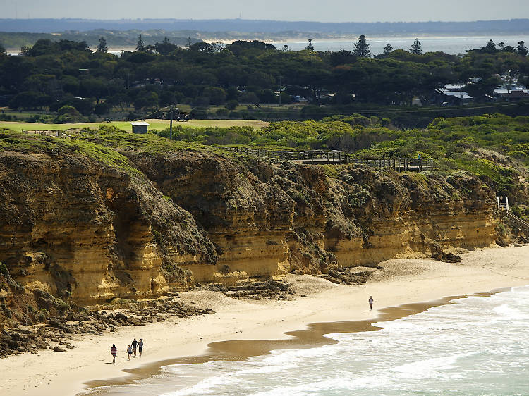 Go on a road trip on the Great Ocean Road