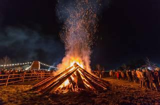 Huon Valley Mid-Winter Festival