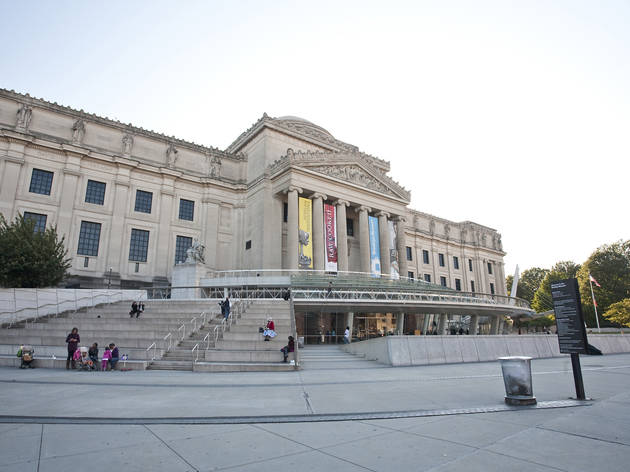 Image result for brooklyn museum images