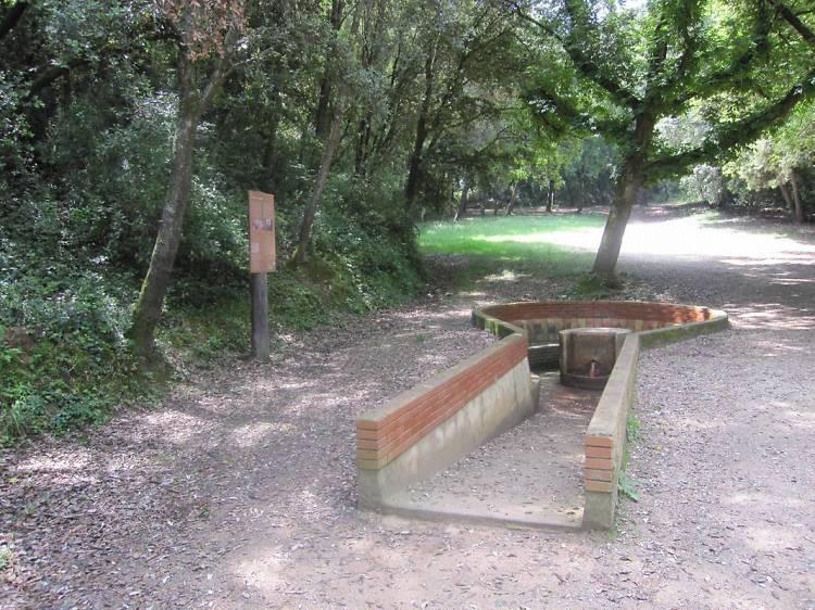 Un pícnic a la font del Raig