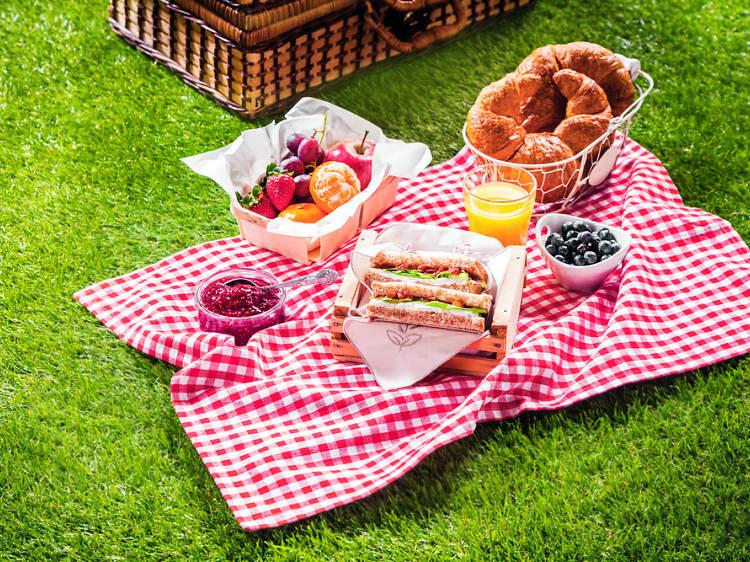 Fer un pícnic