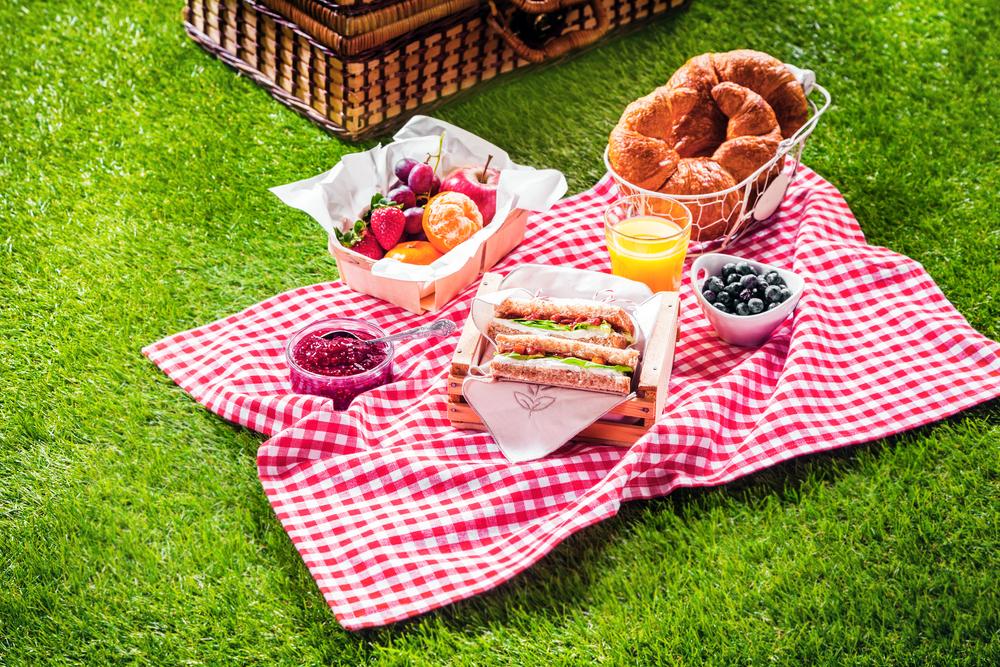 Fer un pícnic a la vora del mar