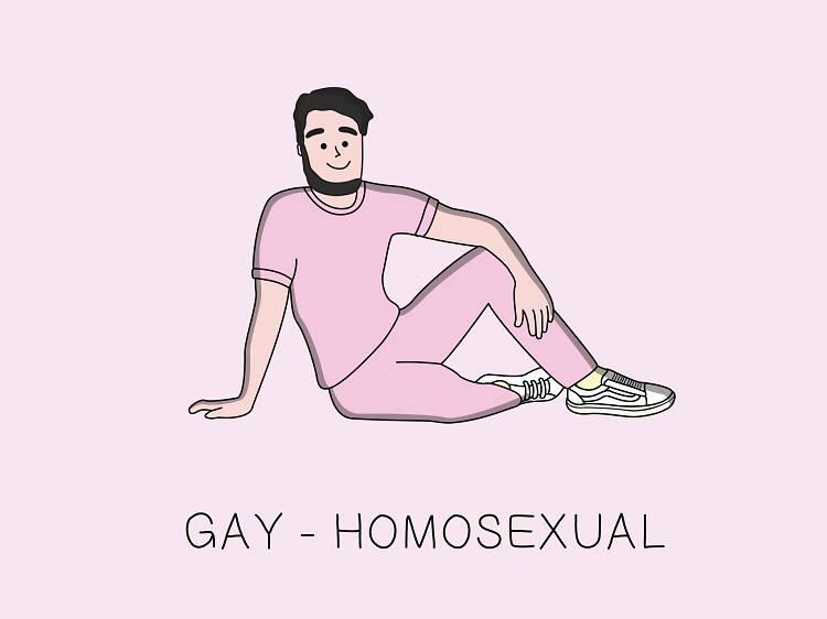 Gay-Homosexual