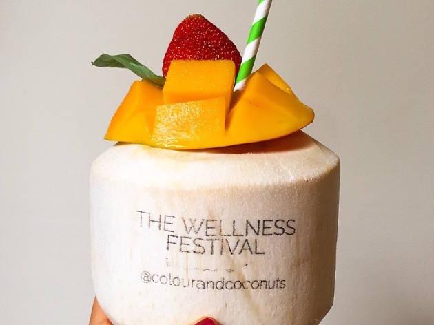 The Wellness Festival