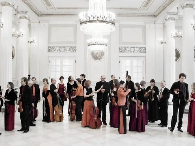 Festival Bach: Brandenburg Concertos