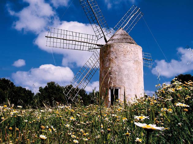 (©Consell Insular de Formentera - Alfredo Montero)