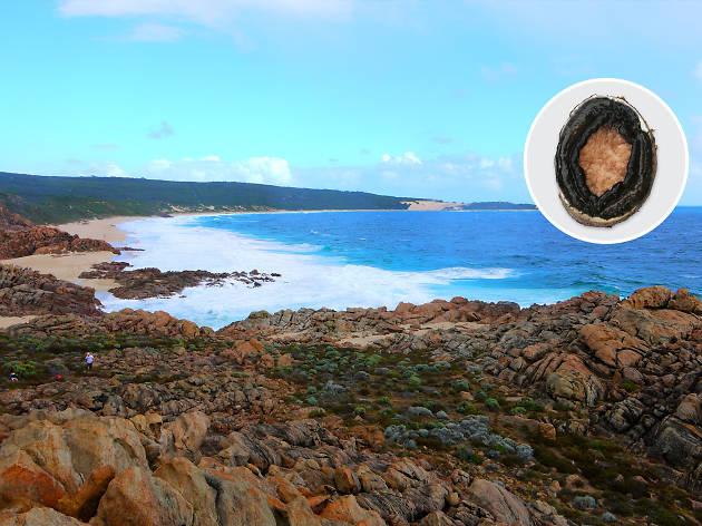 Australia on a plate - Abalone