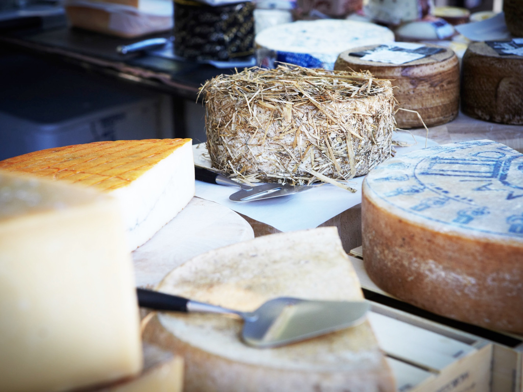Cheese on display at market