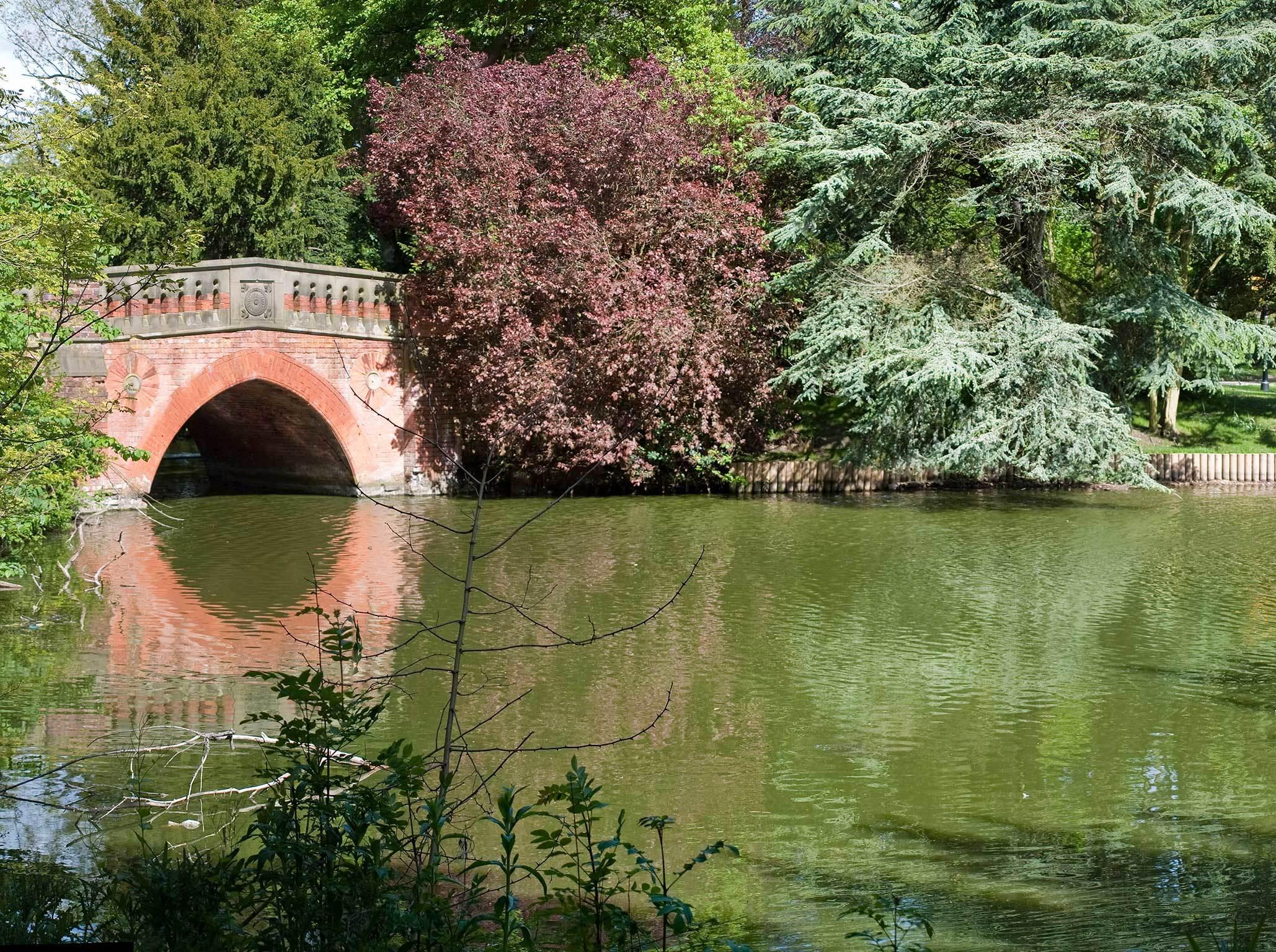 Cannon Hill Park - Crocs
