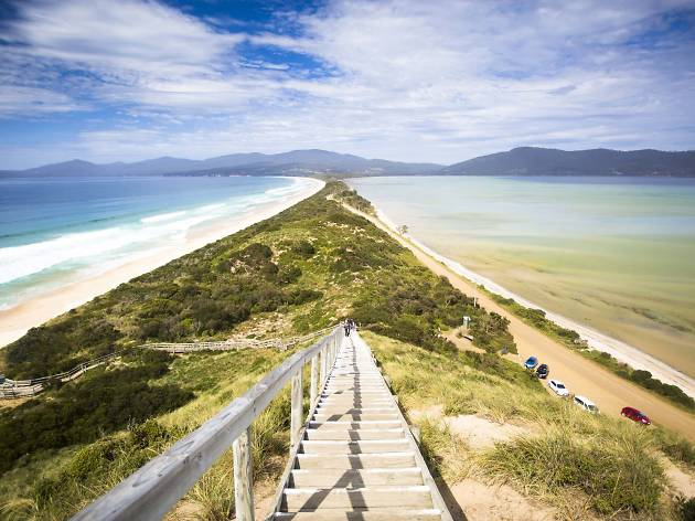 Neck Beach, Bruny Island