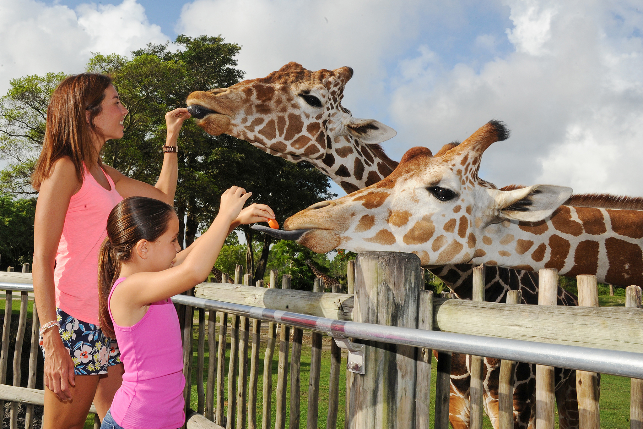 The best things to do in Miami with kids
