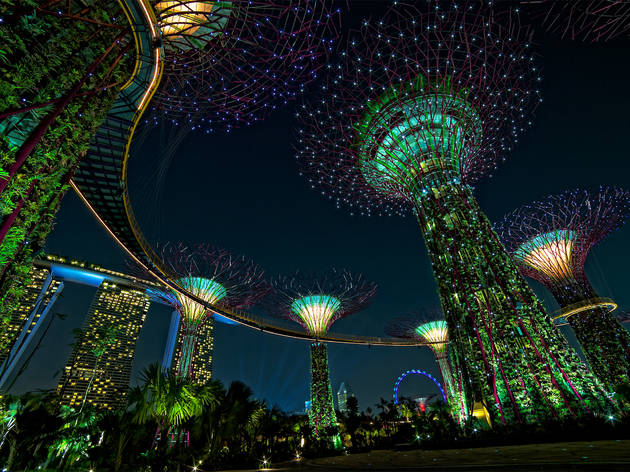 Supertrees of Gardens by the Bay after dark